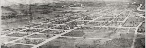 Albury panorama, 1881