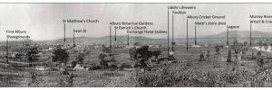 Albury Panorama 1879