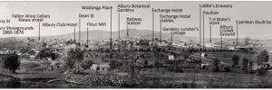 Albury Panorama c1882